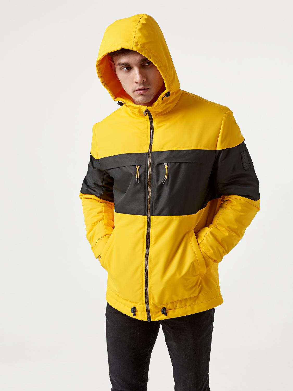 Чоловіча демісезонна куртка T41 Жовта